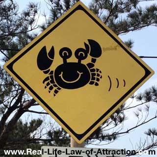 law of attraction tips - feel good - happy crab picture